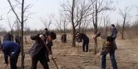 省粮食局组织义务植树活动 - 粮食局