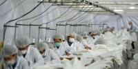 图为河北一家防护服生产工厂。该厂自2月3日复工,并转型生产医用防护服,其日产防护服2.6万套,产品出厂24小时到达武汉抗疫一线。 翟羽佳 摄 - 中国新闻社河北分社
