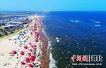 河北省乐亭县是河北省拥有海岸线最长的一个县域,海洋经济发展潜力巨大。图为乐亭县沿海海滨浴场。 刘江涛 摄 - 中国新闻社河北分社