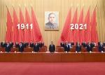 纪念辛亥革命110周年大会在京隆重举行 习近平发表重要讲话 - 审计厅