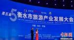 开幕式现场。 衡水市官方供图 - 中国新闻社河北分社