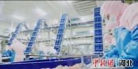 产业项目带增收。 供图 - 中国新闻社河北分社